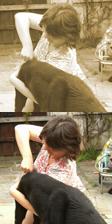 Behandlung von Hunden und Katzen